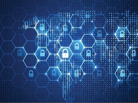 Vulnerability Management Through Network Monitoring