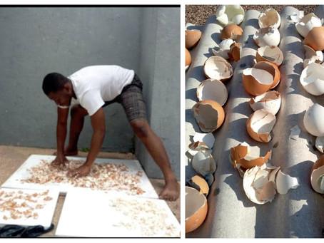 This Ghanaian makes amazing artworks using eggshells