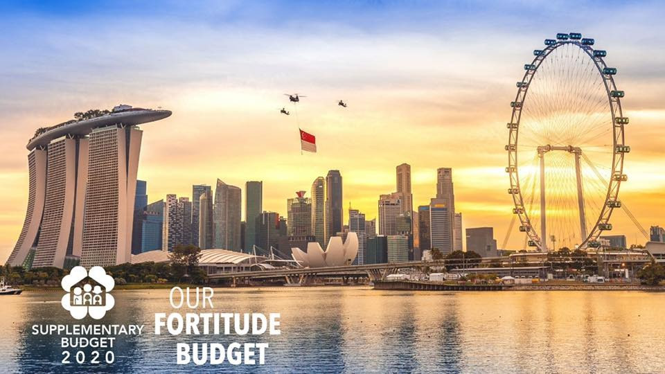Singapore government fortitude budget