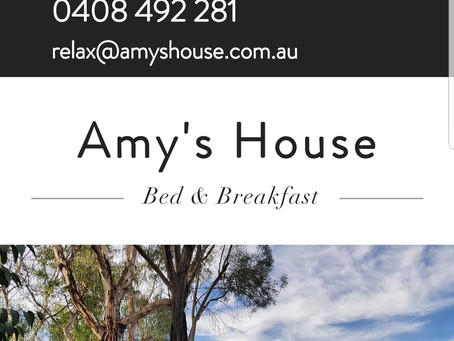 Amy's House Launches new Web Site.