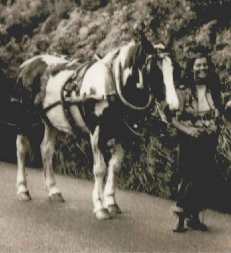 Juanita Berlin, an accomplished horsewoman and wife of Sven Berlin, with her Gypsy vanner, India.