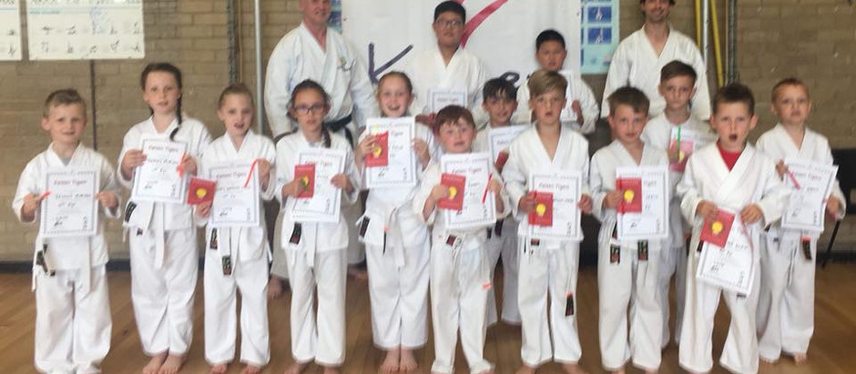 KNM Tigers Grading Saturday 16th June 2018