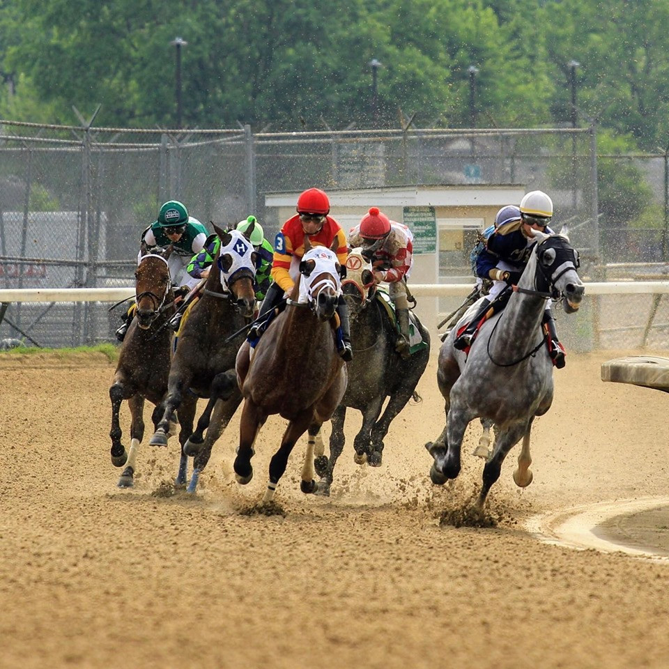 Live horse racing at Churchill Downs. Reasons to attend live horse racing.