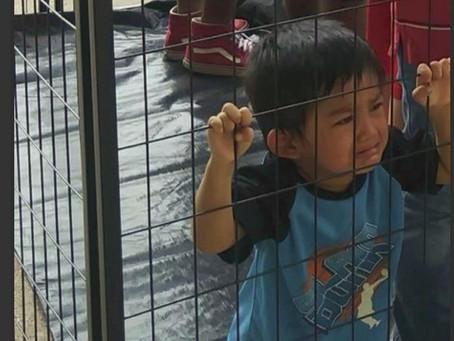 ¡NIÑOS ENJAULADOS!  TelemudoEXPLORA A FONDO LA SEPARACION DE FAMILIAS