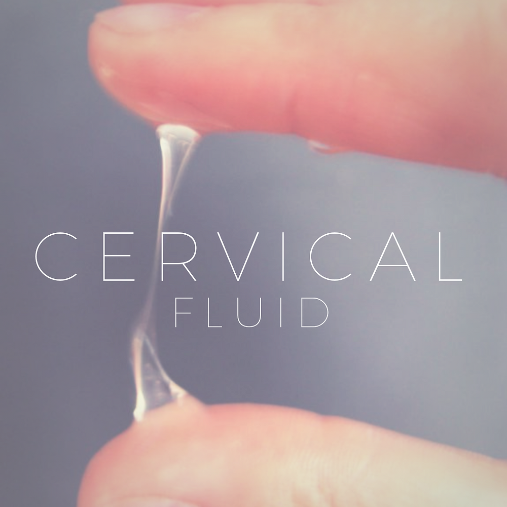 cervical fluid, fertility, infertility, trying to conceive, natural fertility, ivf, iui, picton, mercier therapy