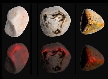 Piedras en la vesícula, una nueva teoría de como detener su crecimiento.
