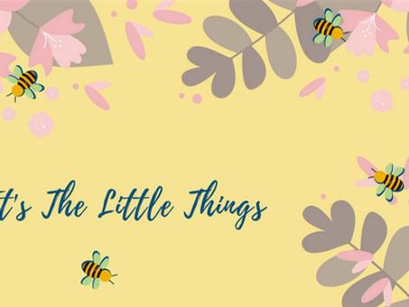 Little Things by Ishikaa Bedia