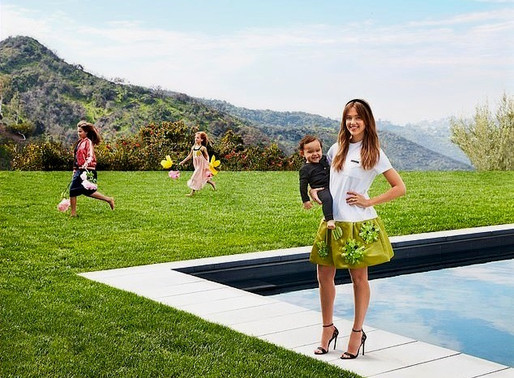 Why Celebrities Love Artificial Lawns!