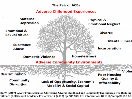 TLOEP.org: A Pair of ACEs Infographic displaying how Trauma & Social Metrics has Impacted our Health