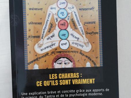 6. Les chakras : ce qu'ils sont vraiment.