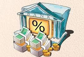 如何計算現金殖利率並找出高股息的投資標的?