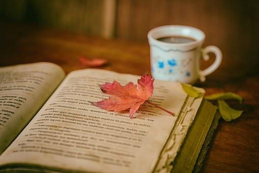 libro, ambiente, armonía, espacio, sé el jefe, hectorrc.om