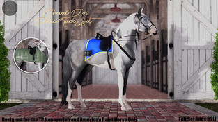 Cheval D'or - Police Riot Tack Set