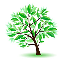 Green Infrastructure Plan tree clipart R
