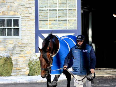 10 Facts About American Pharoah