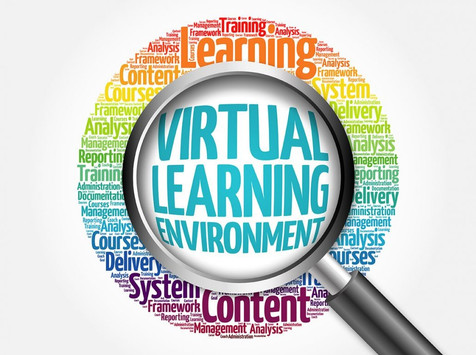 Traditional, Virtual or Cyber 2020-2021 School Year