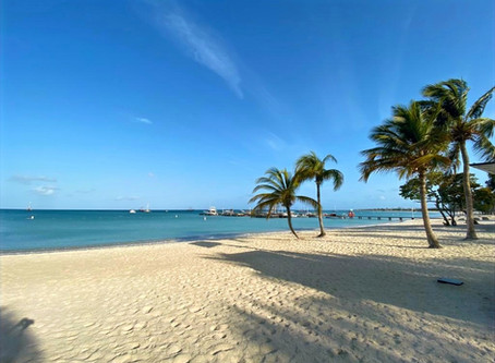 COVID-19 Update and Travel to Aruba