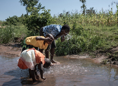 Send A Cow on the importance of WASH, gender and social inclusion.