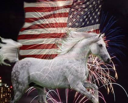 Horse Safety on July 4th