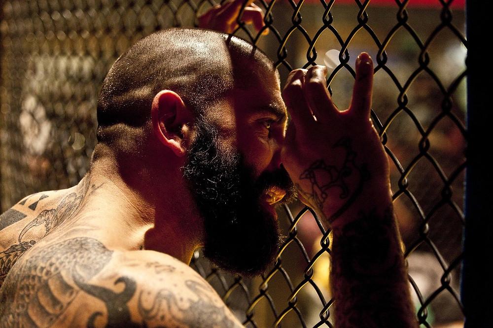 dolor, perder, batalla, pelea, sé el jefe, hectorrc.com