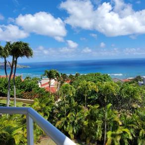 夏威夷豪华独立海景房VS豪华海景大楼单位