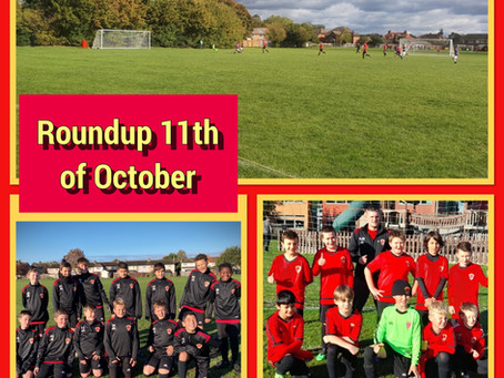 Roundup 11th of October.