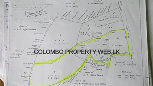 50m to Kandy Road|Colonial Bungalow for Sale |547 Perches 180 Million LKR|Veyangoda|Kalagedihena