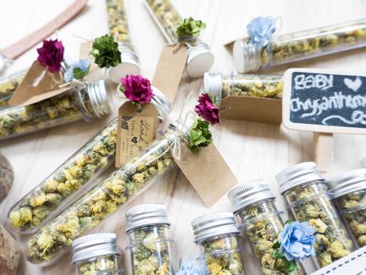 Baby Chrysanthemum Wedding Favor