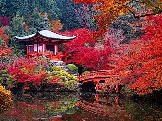 Jardin_Japon_Saiho-Ji-Kyoto-automne.jpg