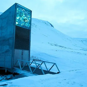 The Arctic 'Doomsday' Seed Vault Just Stashed Away 60,000 More Seed Samples
