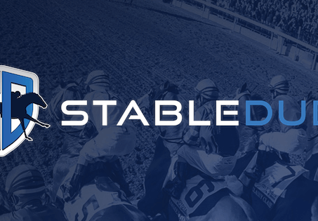 "StableDuel Sponsors Upcoming Project ""Horse Racing in the Sunshine State"""