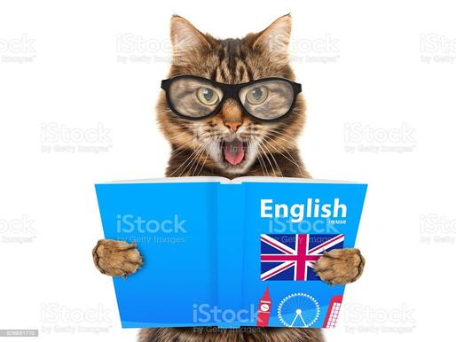 Первый сборник СРПИ на английском языке