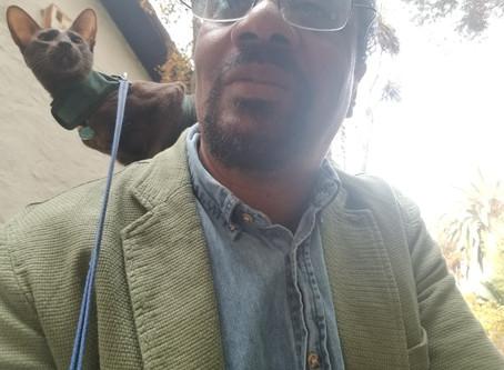 Diary of a Cat Walker: #3