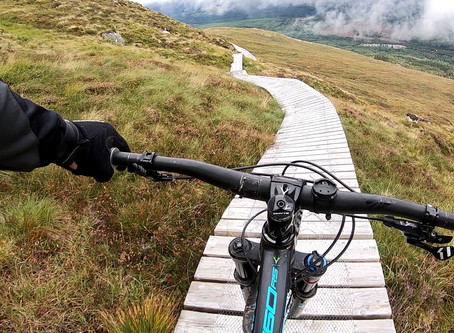 2019 Cycling Trends - from some actual experts!