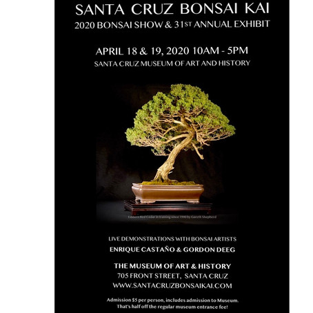 Bonsai Show - April 18-19 2020