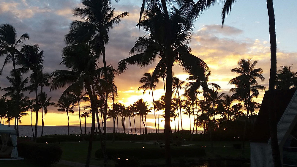 Sunset over palm trees in Maui, Hawaii