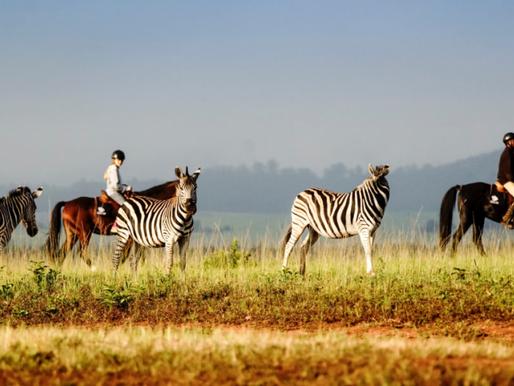 Explore Eswatini on Horseback