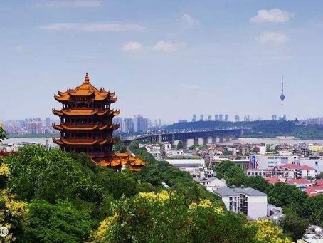 City of Wuhan-Impact of COVID-19 on the Environment