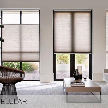 Obtén Control de la luz y gran privacidad en la habitación