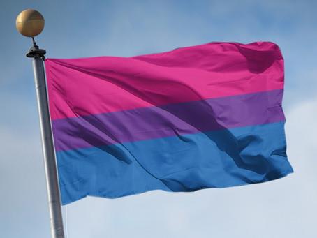 MovBi Movimento Bissexual da Paraíba é primeira ONG bi do país