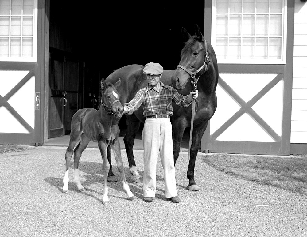 1944 Horse of the Year Twilight Tear with her filly A Gleam at Claiborne Farm in 1949.