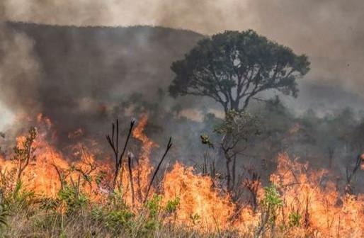 Incêndios - Segurança territorial ambiental econômica