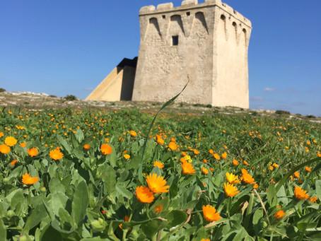 Torre Borraco im Winter