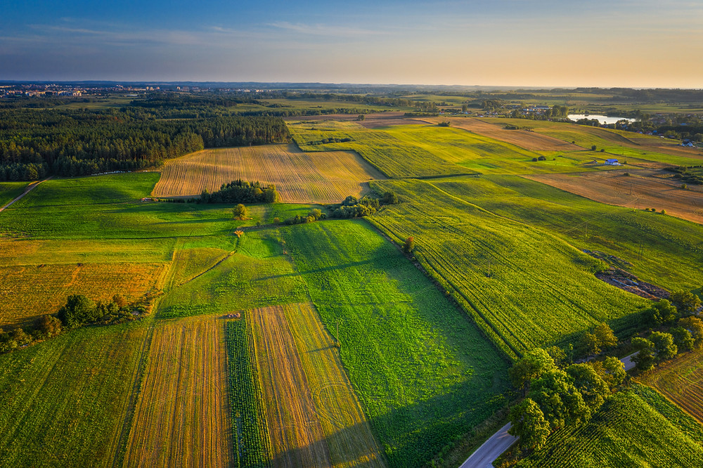 Farm fields, soil health, soil biology, soil food web