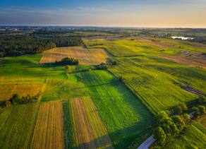 Can soil biology save our farms and feed the world? Absolutely. But it takes full commitment.