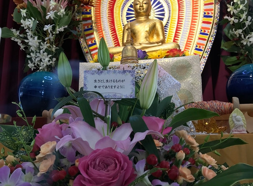 【youtube動画】2018年10月21日(日)『関西月例冥想会』スマナサーラ長老法話