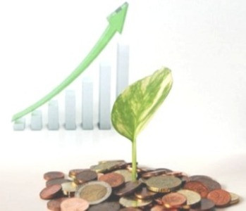 Money Growth depicted by plant growing out of money