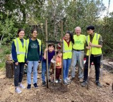 Our 500 Trees Campaign Update: 100 Planted! And Counting….
