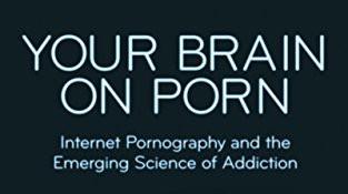 Hundreds of Studies on Porn!