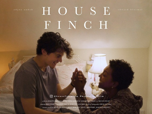 House Finch short film poster